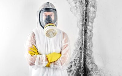 Health Problems Related to Mold in Your Home