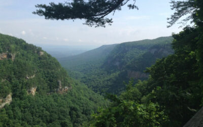 Summer is Coming! Here are Some of Our Favorite Outdoor Places in Georgia