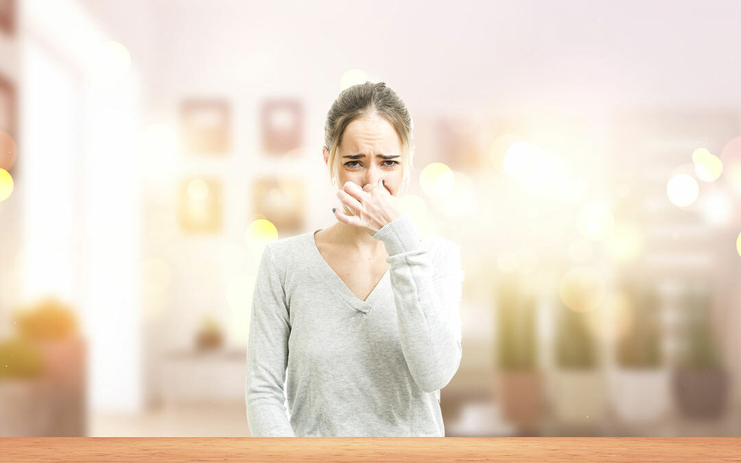 unpleasant basement and crawlspace odors
